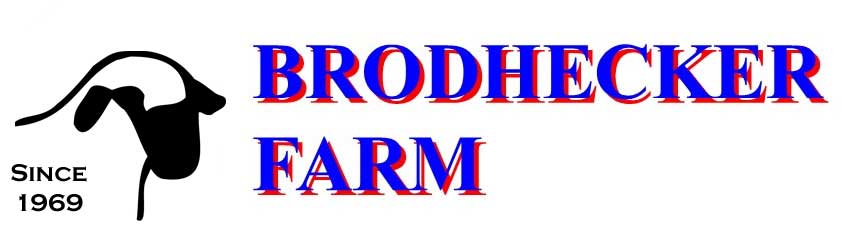 Brodhecker farm